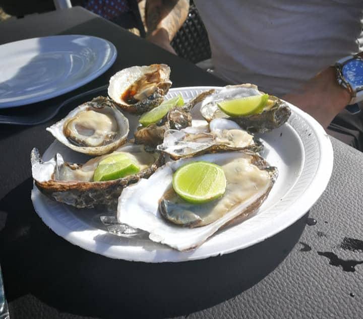 plate of oysters-puerto vallarta travel tips