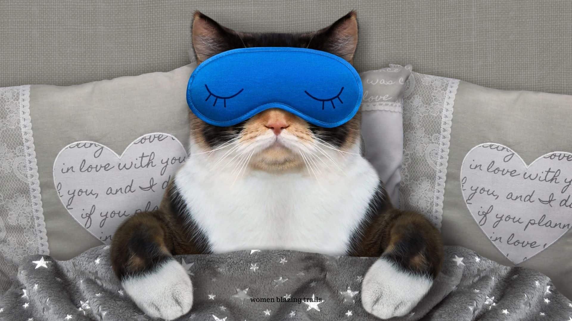 sleeping cat-how to get a good night sleep article