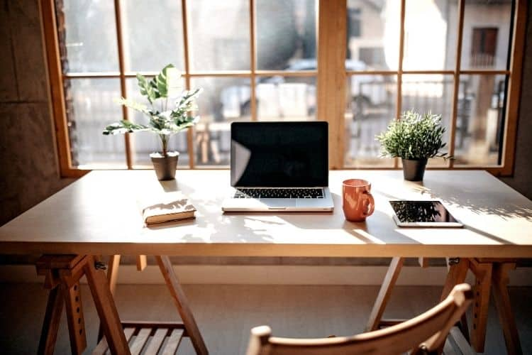 clean desk with plants and a window-home office tips for success